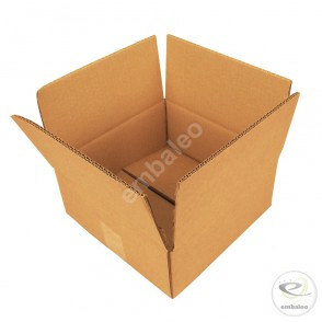 Carton double cannelure 25 x 25 x 10 cm